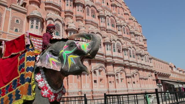 A man sits on an ceremonial elephant outside Hawa Mahal Palace.