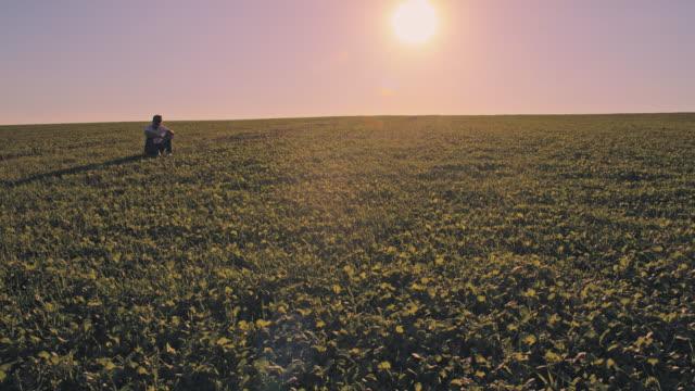 vídeos de stock e filmes b-roll de ws man sitting in a field of clover - one mid adult man only