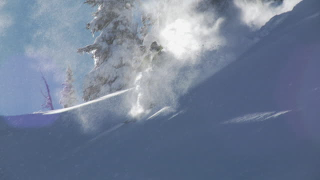 stockvideo's en b-roll-footage met ws ts slo mo man skiing down on powder snow in heavy backlight, snow particles spraying in air / alta, snowbird, utah, usa - alta utah