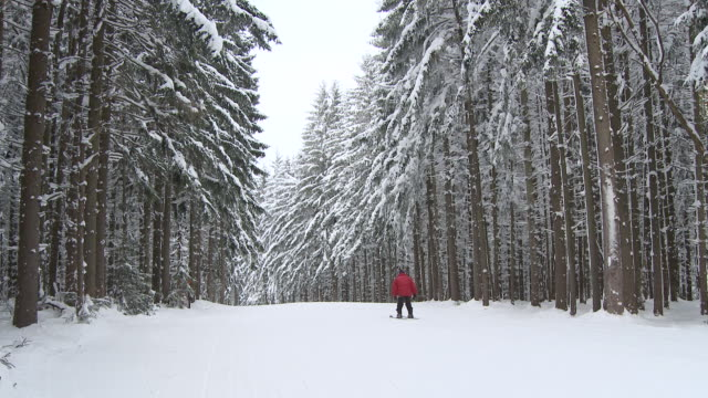 MS Man skiing down ski hill surrounded by trees covered in powder snow / Ellicottville, New York, United States