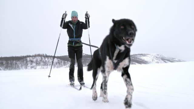 SLO MO Man skijoring in Norway
