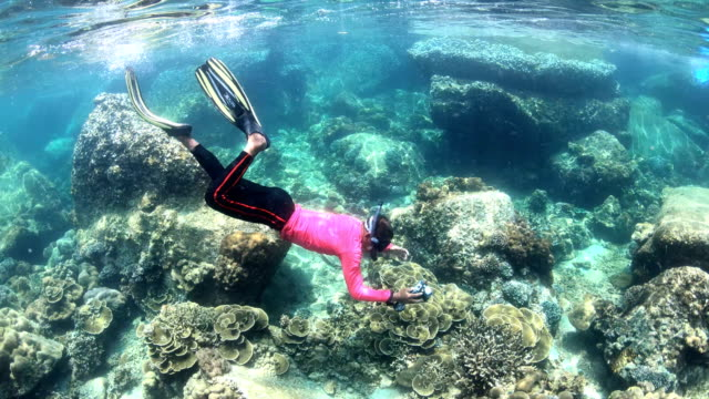 SLOW MOTION UNDERWATER: Man snorkeling exotic reef with tropical fish