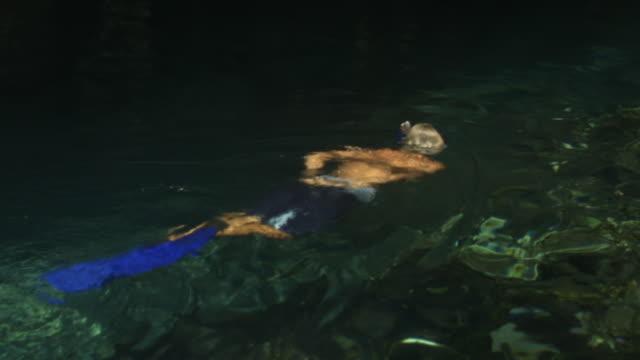 vídeos de stock e filmes b-roll de ms man snorkeling in cave/ tulum, mexico - cara para baixo