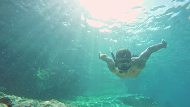 ms 男水中日当たりの良い青い海でシュノーケ リング - 水着点の映像素材/bロール