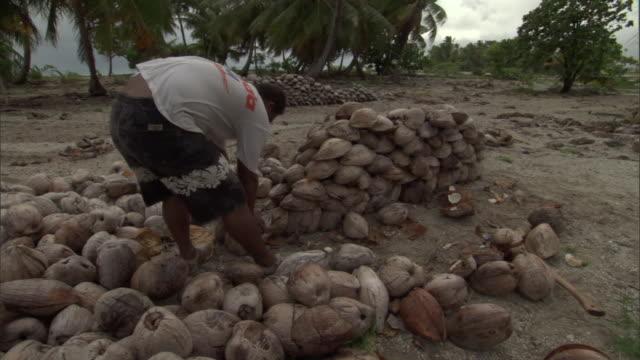 stockvideo's en b-roll-footage met man sorts coconuts, french polynesia - bukken