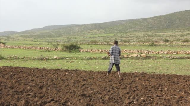 Man sowing seeds