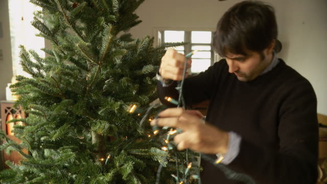 stockvideo's en b-roll-footage met ms zi td man standing by christmas tree and untangling christmas lights / new york city, new york, usa  - kerstboom versieren