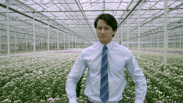 stockvideo's en b-roll-footage met man standing in greenhouse  - overhemd en stropdas