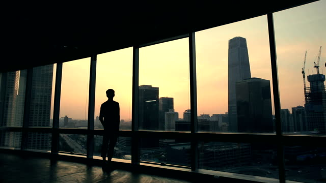 man standing infronf of windows - controluce video stock e b–roll