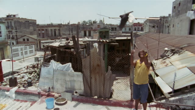 SLO MO, TU, PAN, Man standing on rooftop, releasing two pigeons from hands, Old Havana, Cuba