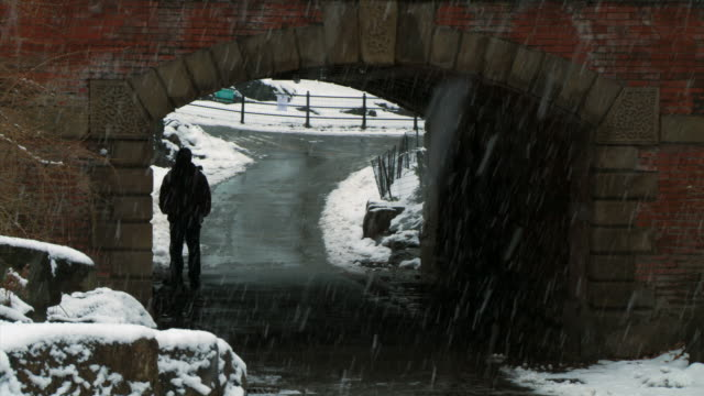 ws man standing under bridge in central park during winter / new york city, new york, usa - underpass stock videos and b-roll footage