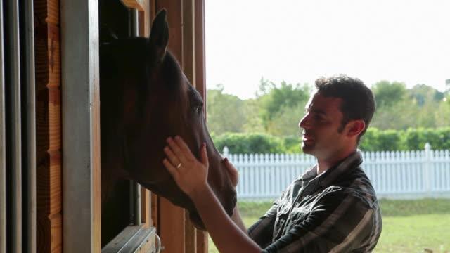 man stroking horse's head in stable - 厩舎点の映像素材/bロール