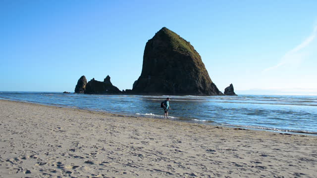 man strolling on the beach near haystack rock in cannon beach - haystack rock stock videos & royalty-free footage