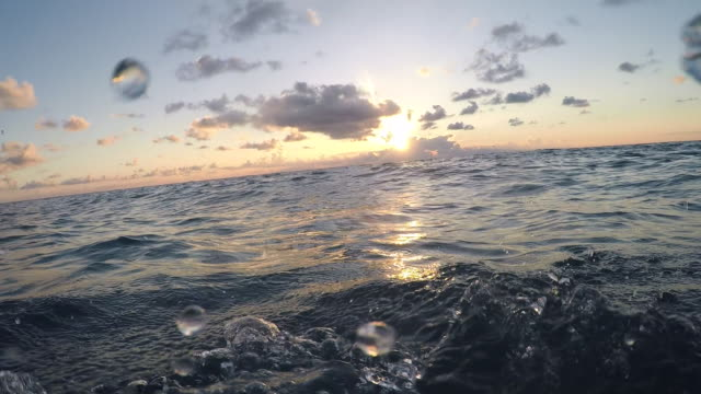 pov man swimming front crawl in open sea. - point of view stock videos & royalty-free footage