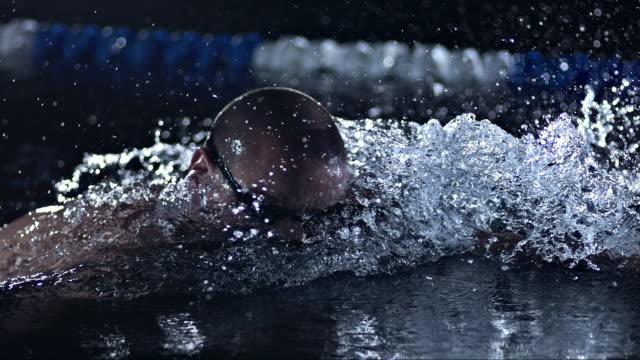 vídeos de stock, filmes e b-roll de man swimming front crawl - kranj