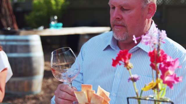 mann, die wirbelnden rosé-wein im glas - zeitlupe - weinberg stock-videos und b-roll-filmmaterial
