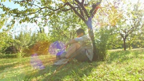 vídeos de stock e filmes b-roll de man taking a break under a tree from his hike - domingo