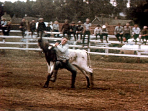 1950 man taking bull down by horns in rodeo / gunnison, colorado / audio - gunnison stock videos & royalty-free footage