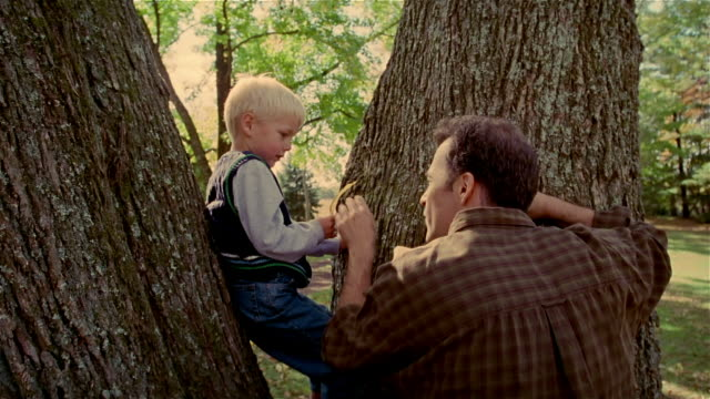 cu, man talking to boy (4-5 years) sitting on tree, usa, pennsylvania - 4 5 years stock videos and b-roll footage