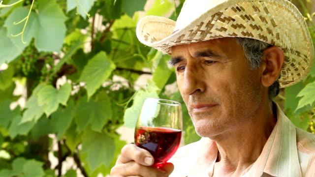 man tasting wine - cabernet sauvignon grape stock videos and b-roll footage