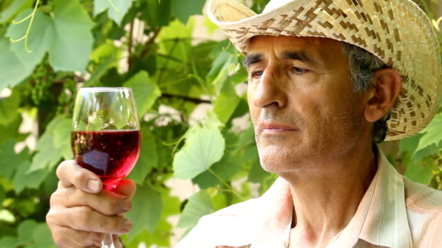 vídeos de stock, filmes e b-roll de homem de degustação de vinhos - masculinidade