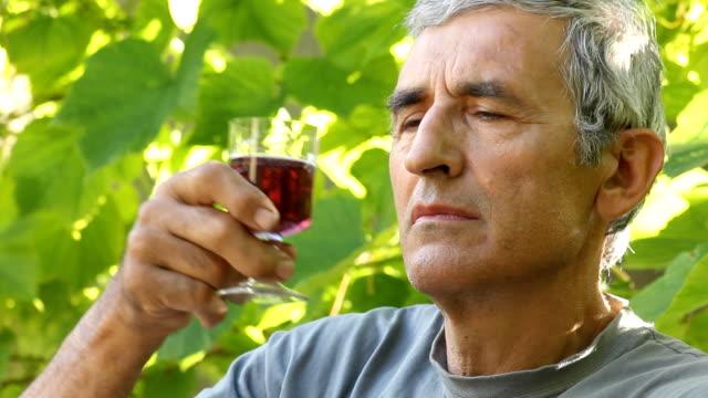 vídeos y material grabado en eventos de stock de hombre de degustación de vinos - uva cabernet sauvignon