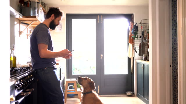 man texting on phone in kitchen - 35 39 years stock videos & royalty-free footage
