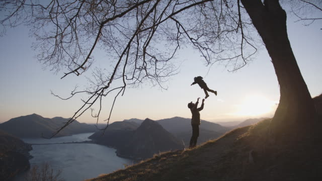 man throwing child into the air celebrating under tree at sunset - throwing stock videos & royalty-free footage