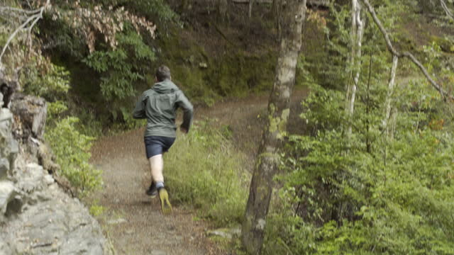 man trail runner jogging the remarkables new zealand - natural parkland stock videos & royalty-free footage