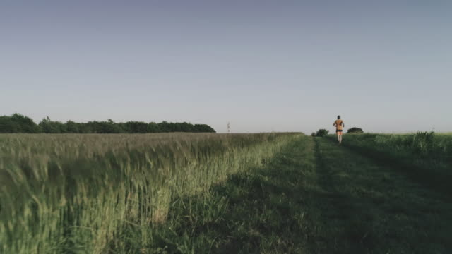 stockvideo's en b-roll-footage met man-trail uitgevoerd in een veld: drone luchtfoto - volgen activiteit