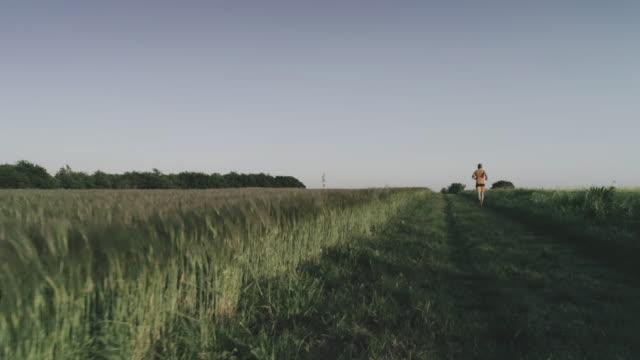 stockvideo's en b-roll-footage met man-trail uitgevoerd in een veld: drone luchtfoto - following moving activity