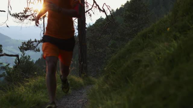 trailrunning-mann in den wald, berg - joggen stock-videos und b-roll-filmmaterial