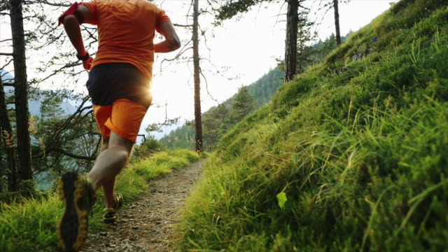 man trail running in the forest - dirt track stock videos & royalty-free footage