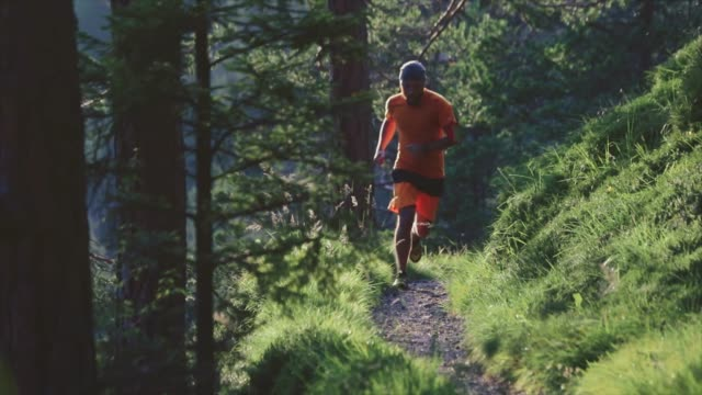man trail running in the forest - footpath stock videos & royalty-free footage