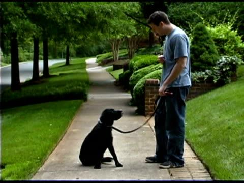 vidéos et rushes de man training pet dog on sidewalk - un seul homme d'âge moyen