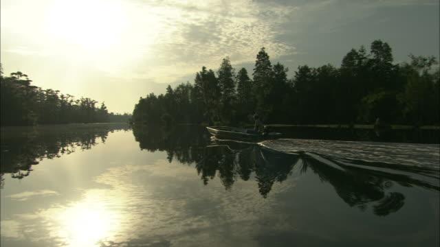 a man travels in a motorboat through the okefenokee swamp. - オケフェノキー国立野生生物保護区点の映像素材/bロール