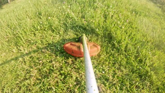 pov uomo tagliare l'erba con tagliaere l'erba - tosaerba video stock e b–roll