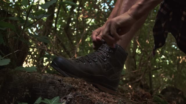 man tying shoelace in forest - boot stock videos & royalty-free footage