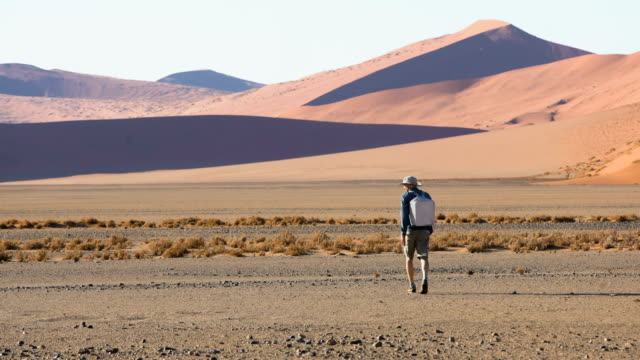 man under highest sand dune in namibia. - terra brulla video stock e b–roll
