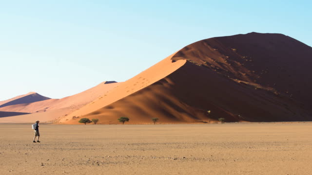 man under highest sand dune in namibia. - namibia desert stock videos and b-roll footage