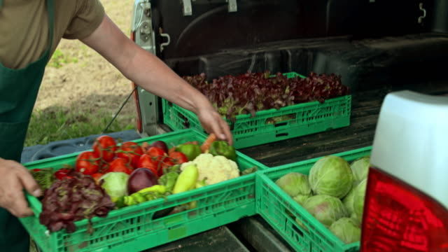 man unloading the delivery truck full of produce - unloading stock videos & royalty-free footage