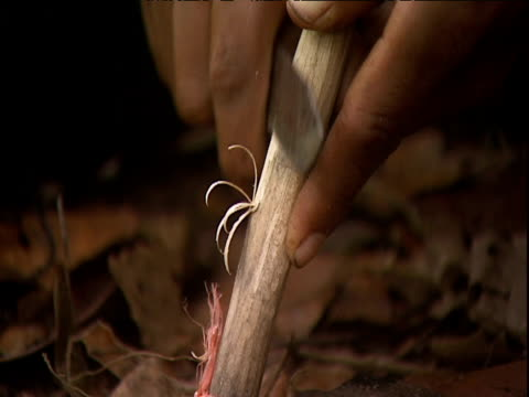 Man uses knife to whittle tree branch for kindling Venezuela