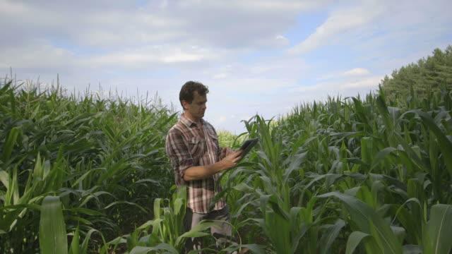 Man using digital digital tablet in field