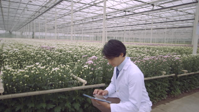 stockvideo's en b-roll-footage met man using digital tablet in greenhouse - overhemd en stropdas