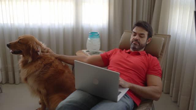 vídeos de stock e filmes b-roll de man using laptop and stroking dog at home - aconchegante