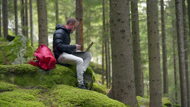 man using laptop in a green forest in switzerland - offbeat stock videos & royalty-free footage