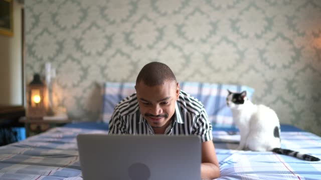man using laptop in bedroom with cat - lying on front stock videos & royalty-free footage