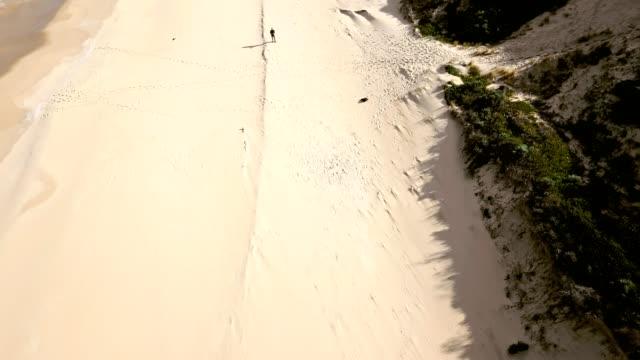 uomo che utilizza il drone sulla spiaggia in australia - remote control video stock e b–roll