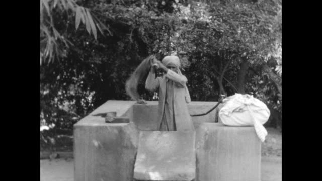 man walking across lawn carrying sack hand washes clothes slapping the clothes on a stone poses for camera from the home movies of austen havelock... - domestic staff stock videos & royalty-free footage