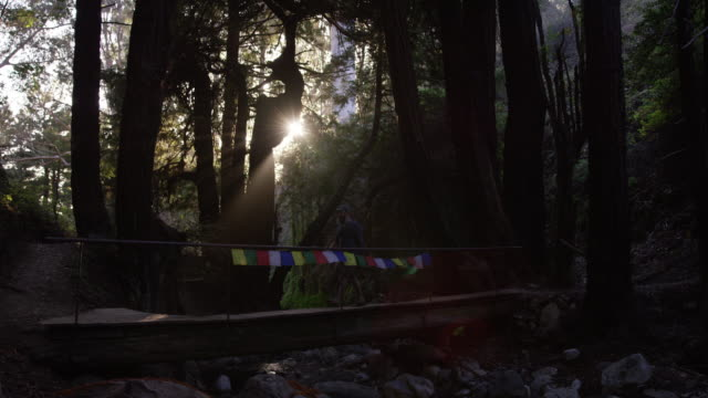 man walking across tibetan prayer flag bridge in forest - schattig stock-videos und b-roll-filmmaterial